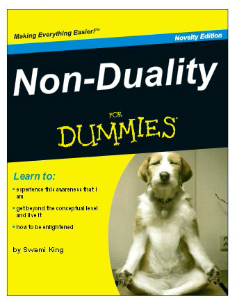 nonduality-for-dummies (Matthew King)