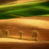 On The Field's Appeal by Pawel Kucharski