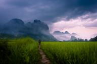 Path to Wonder by Dan Ballard Photography