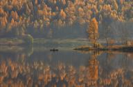 Two Autumns by Mikhail Trakhtenberg