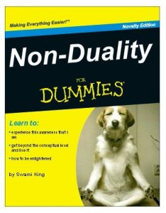 nonduality-for-dummies-matthew-king